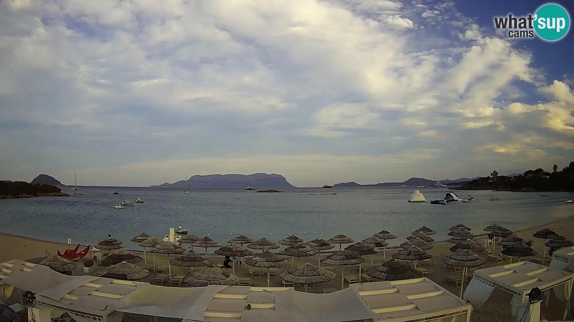 Golfo Aranci (Sardinia) Wed. 19:35