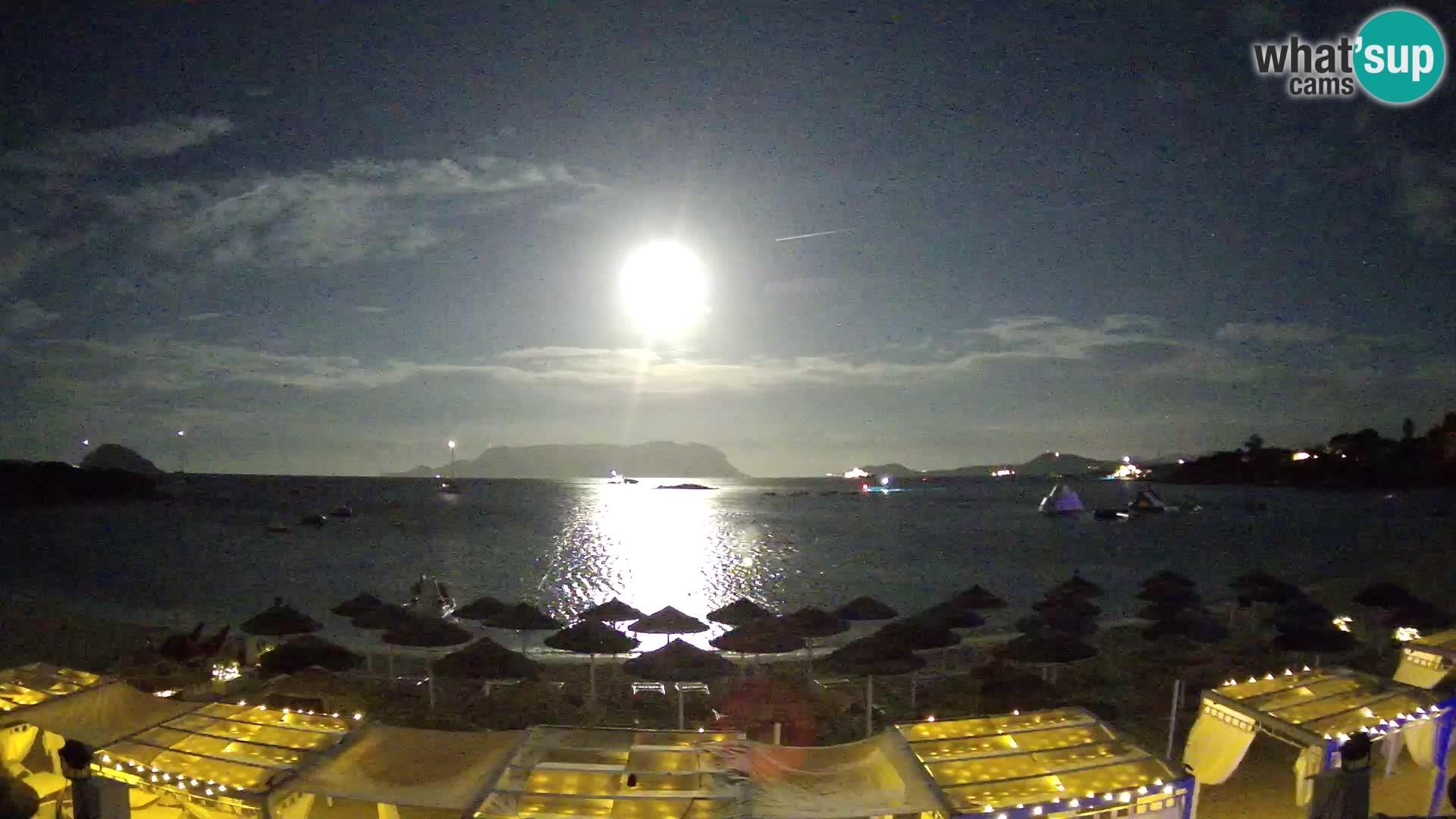 Golfo Aranci (Sardinia) Tue. 22:35