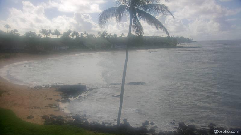 Koloa, Hawaii Mon. 08:21