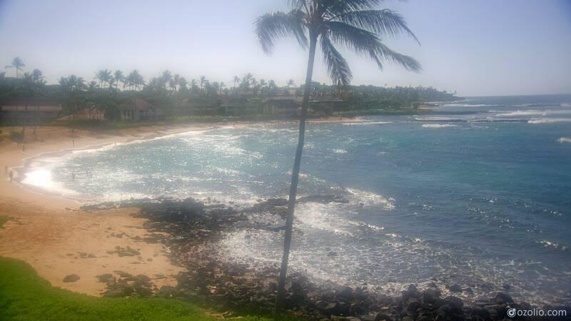 Koloa, Hawaii Mon. 09:21
