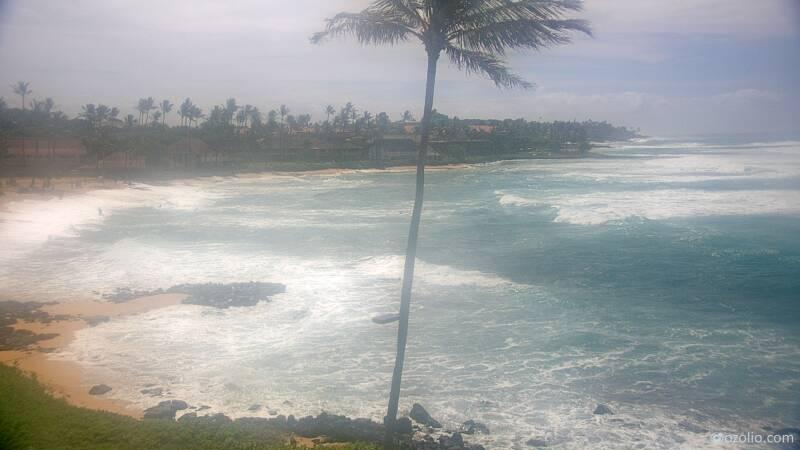 Koloa, Hawaii Mon. 10:21