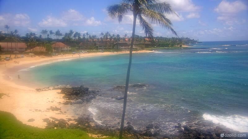 Koloa, Hawaii Mon. 12:21