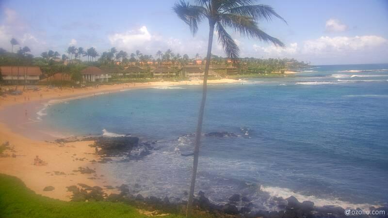 Koloa, Hawaii Mon. 13:21