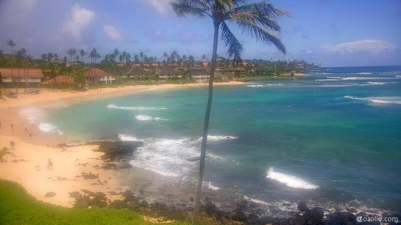 Koloa, Hawaii Mon. 14:21