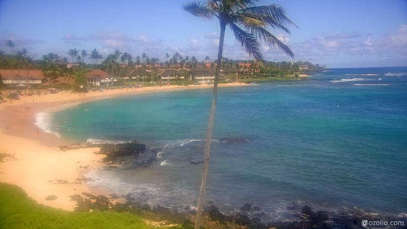Koloa, Hawaii Mon. 15:21