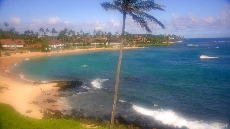 Koloa, Hawaii Mon. 16:21