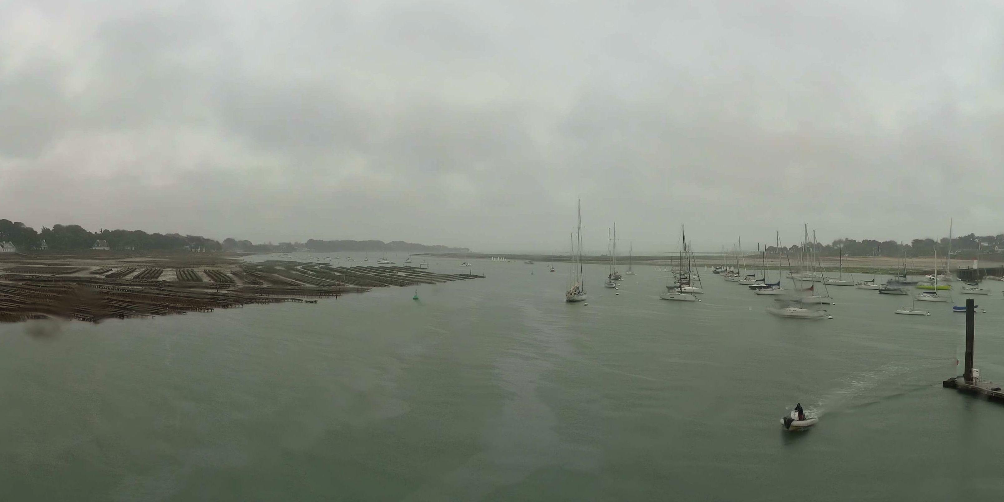 la trinite sur mer chat Office de tourisme de la trinité sur mer, en bretagne sud, dans le morbihan découvrez le port de plaisance, les plages, les hébergements, les restaurants de la trinité sur mer.