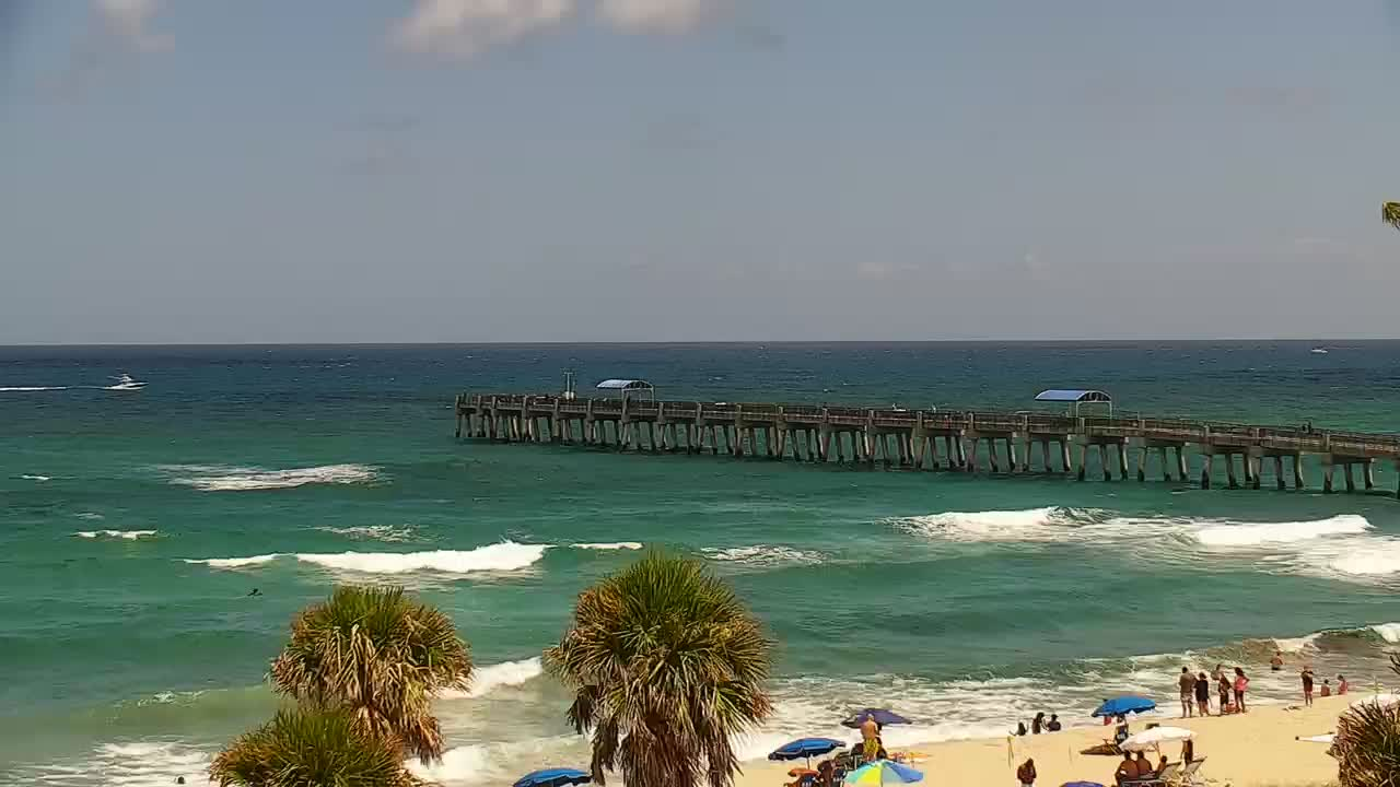Lake worth pier surf report surf forecast and live surf for Lake worth pier fishing