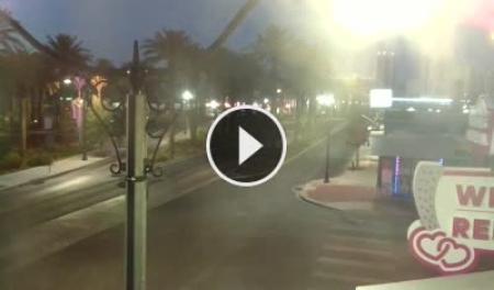 Las vegas strip webcam - Porno photo |Las Vegas Blvd Webcam