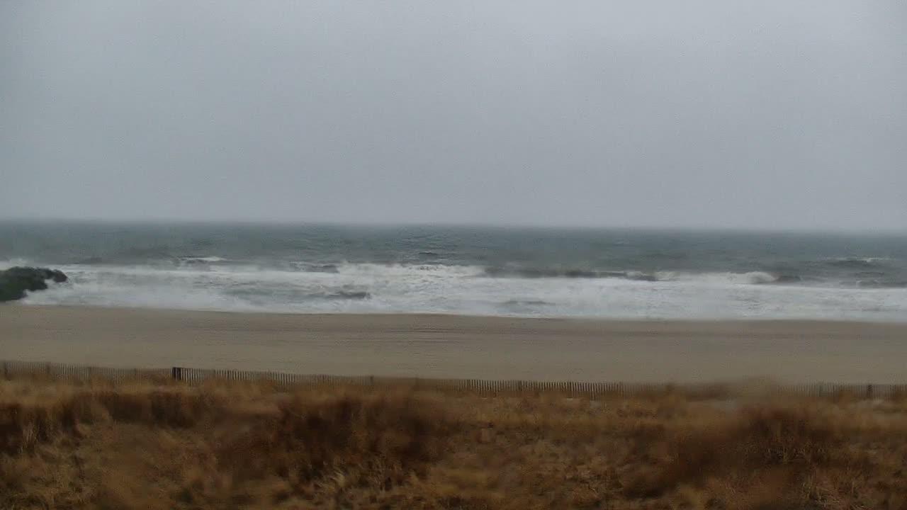 Surfline Long Beach Island