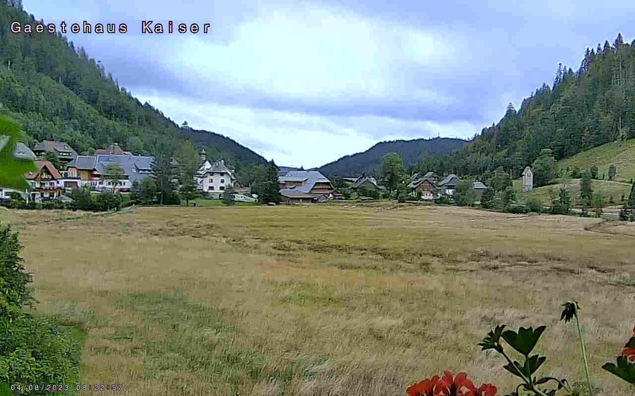 Menzenschwand-Hinterdorf Thu. 09:05