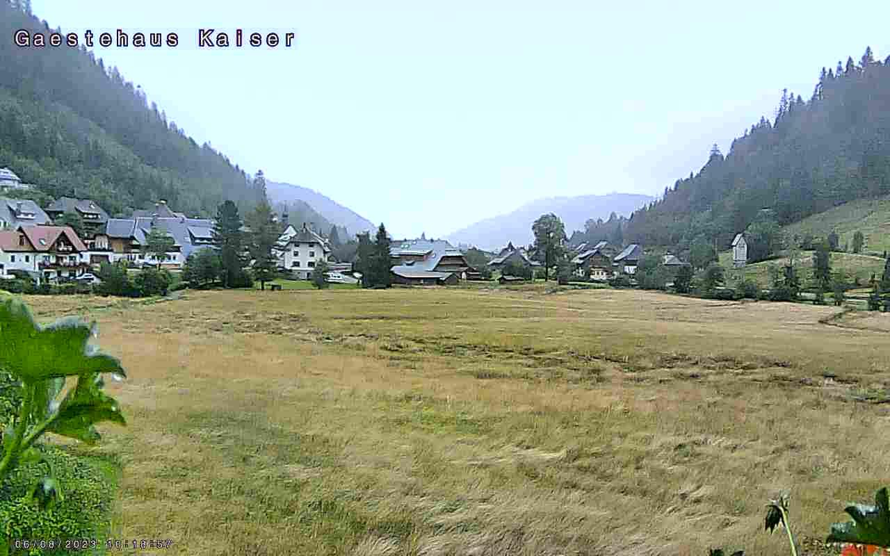 Menzenschwand-Hinterdorf Thu. 11:04