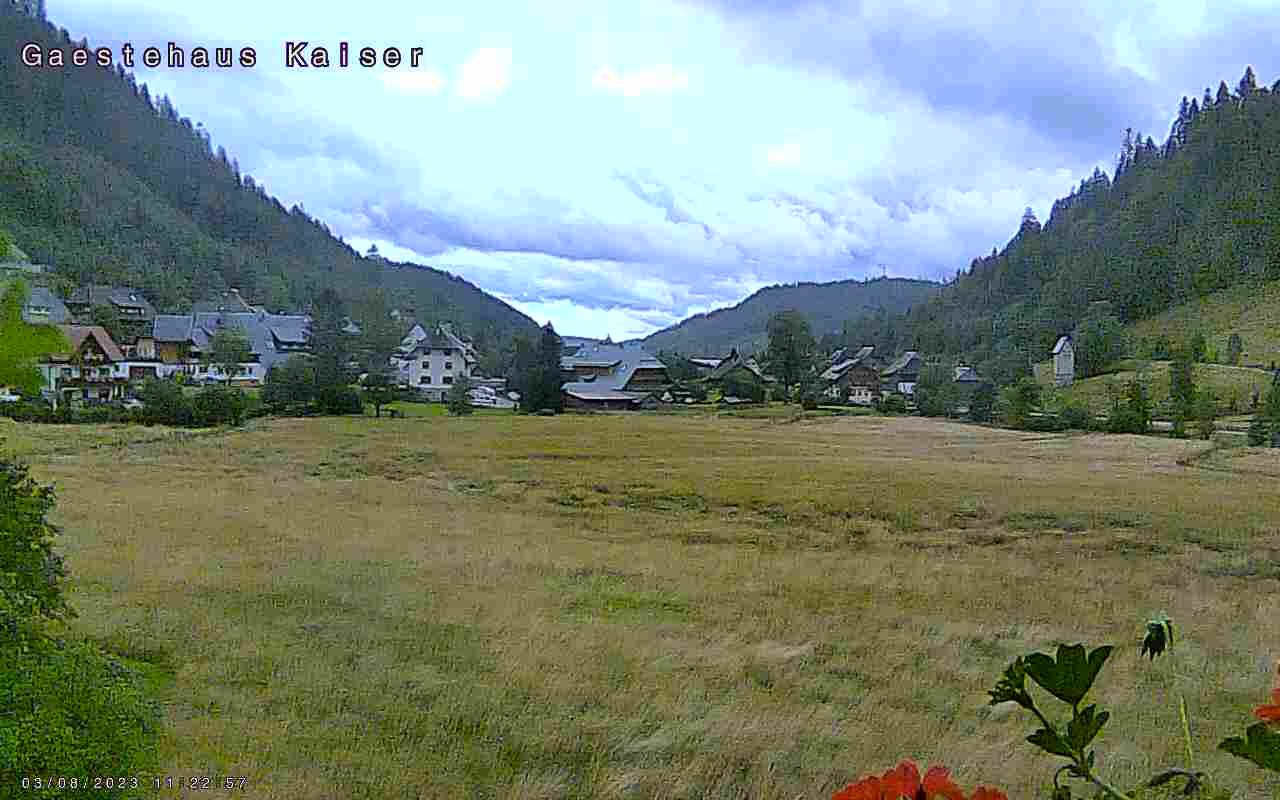 Menzenschwand-Hinterdorf Thu. 12:05