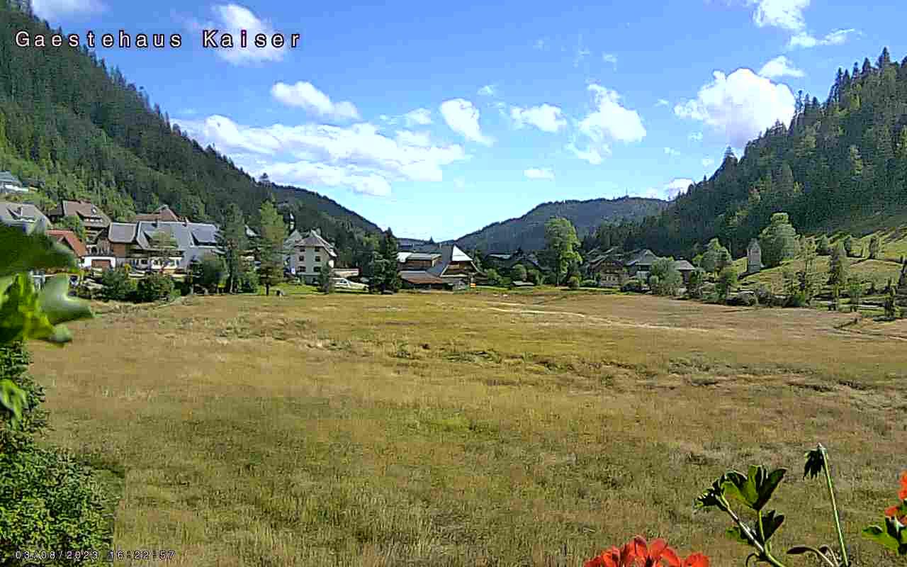 Menzenschwand-Hinterdorf Wed. 17:04