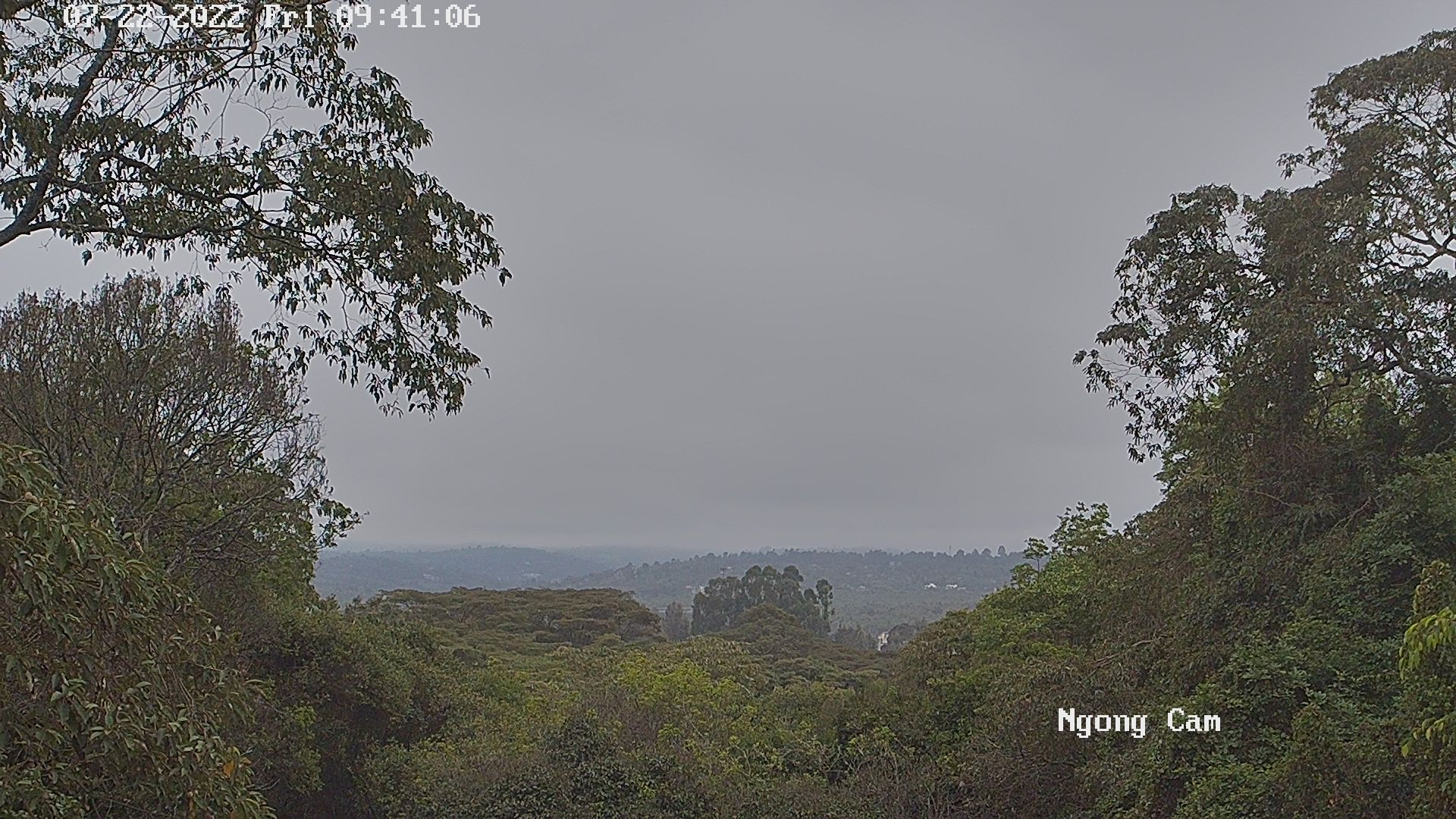 Kilimanjaro Webcam Kenya