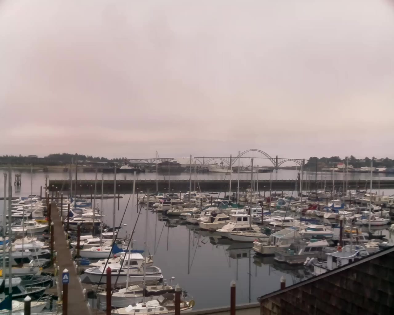 Newport Beach Oregon Webcam