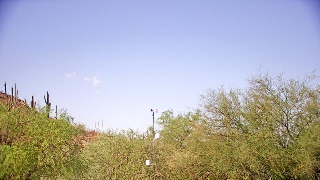 Phoenix, Arizona Sat. 08:53