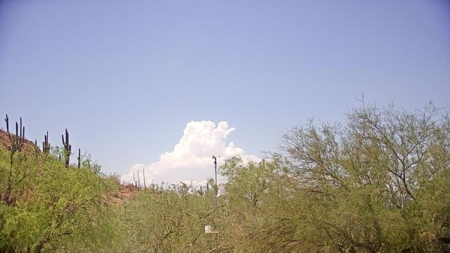 Phoenix, Arizona Sat. 11:53