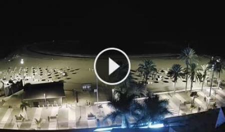 Playa de las Americas (Tenerife) Tue. 04:18