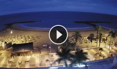 Playa de las Americas (Tenerife) Tue. 07:18