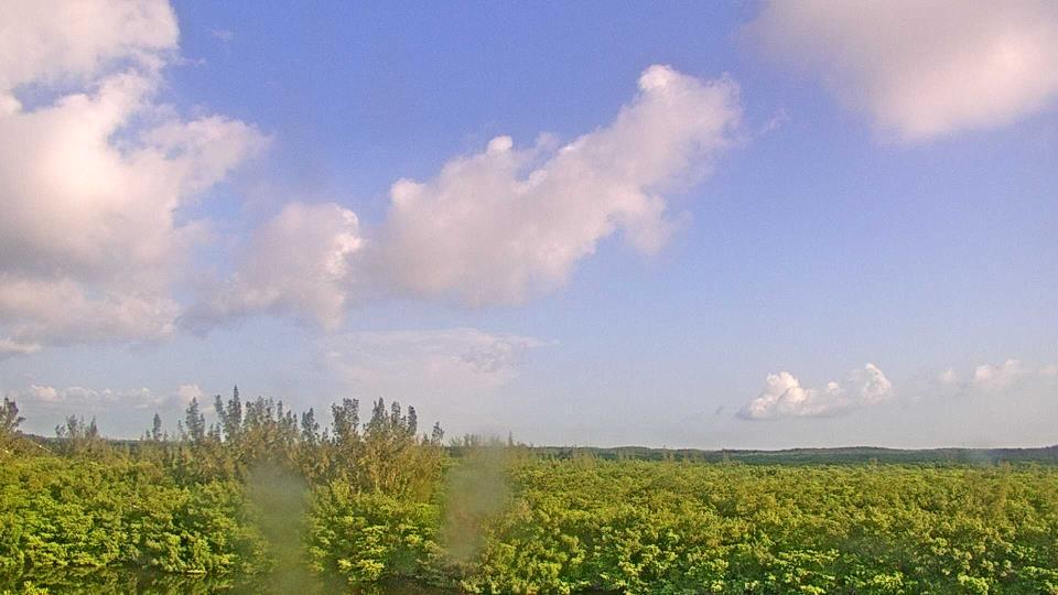 Saint Petersburg, Florida Fr. 09:09