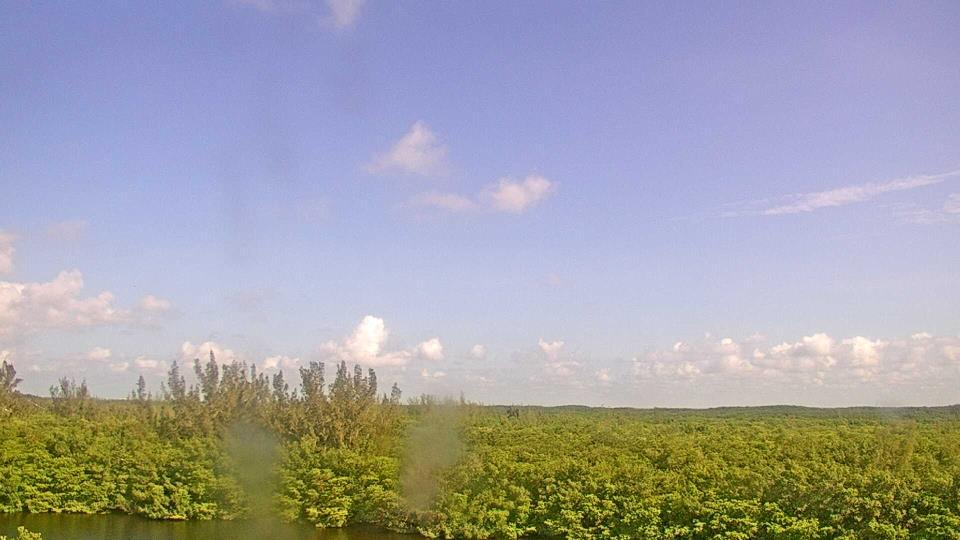 Saint Petersburg, Florida Fr. 10:09