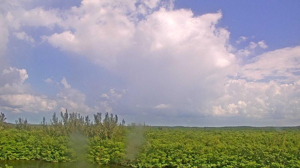 Saint Petersburg, Florida Fr. 11:09