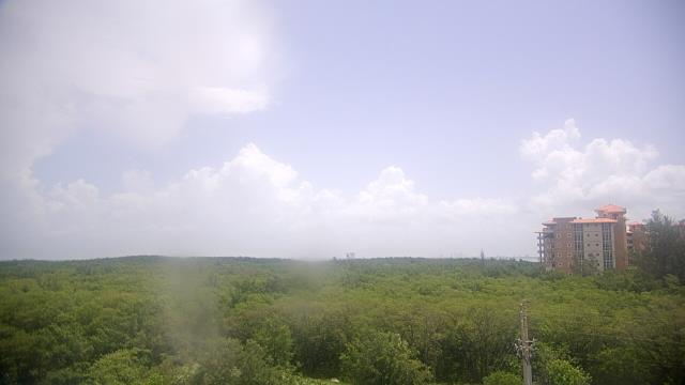 Saint Petersburg, Florida Fr. 12:09