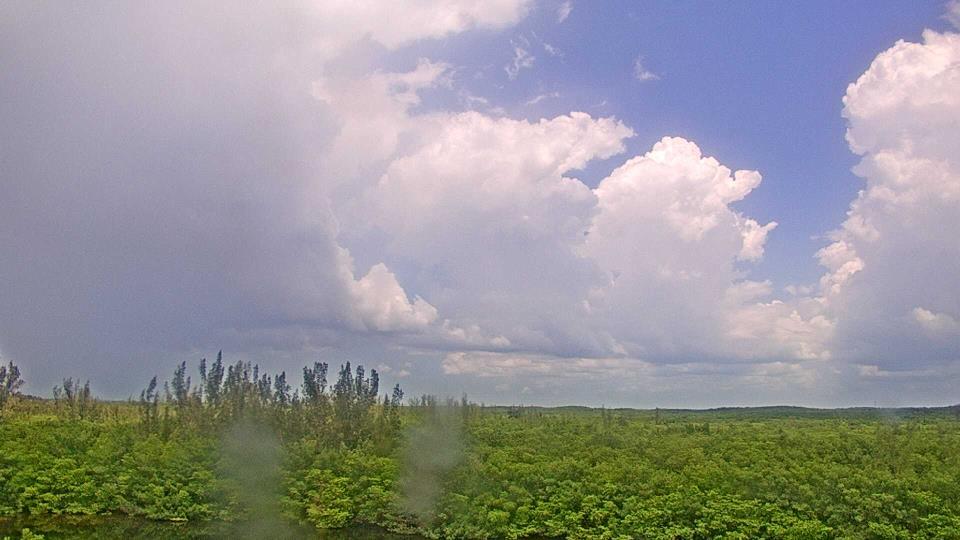 Saint Petersburg, Florida Fr. 13:09