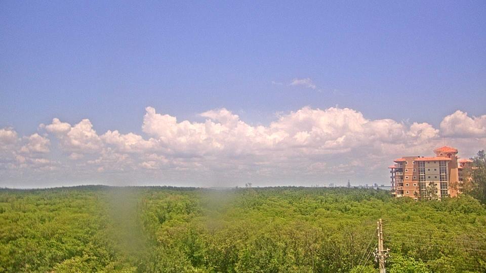 Saint Petersburg, Florida Do. 14:09