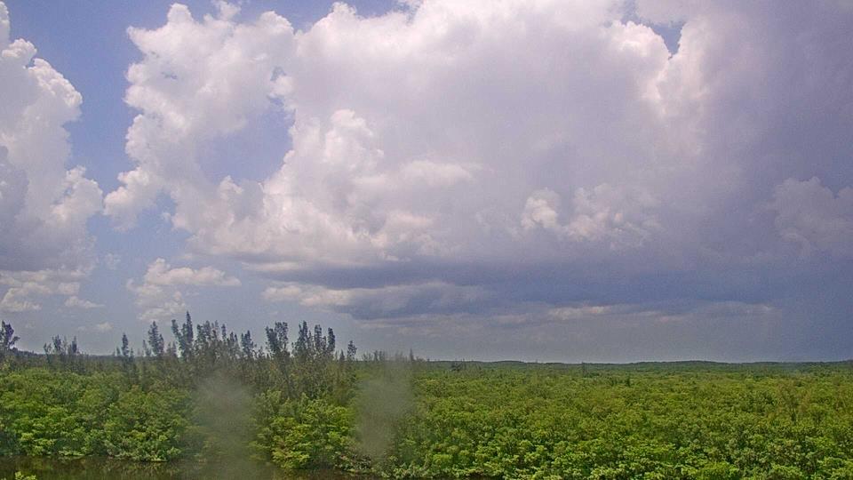Saint Petersburg, Florida Fr. 15:09
