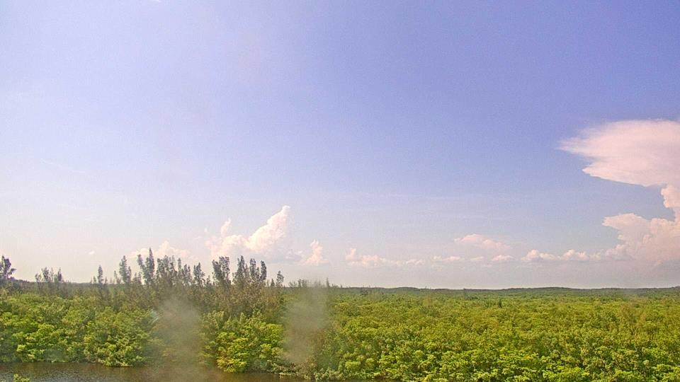 Saint Petersburg, Florida Fr. 16:09