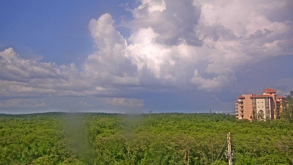 Saint Petersburg, Florida Do. 17:09