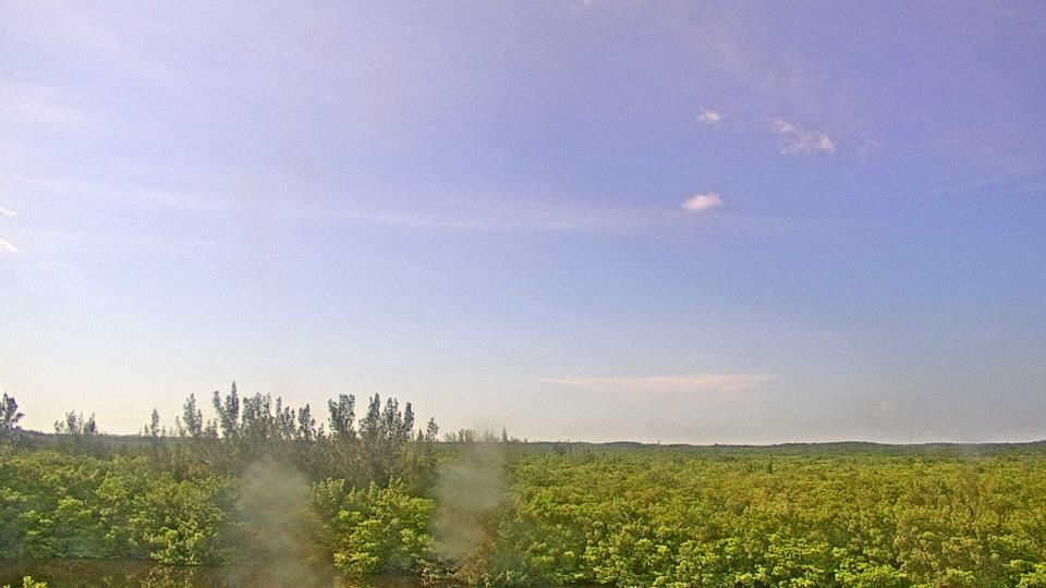 Saint Petersburg, Florida Fr. 17:09