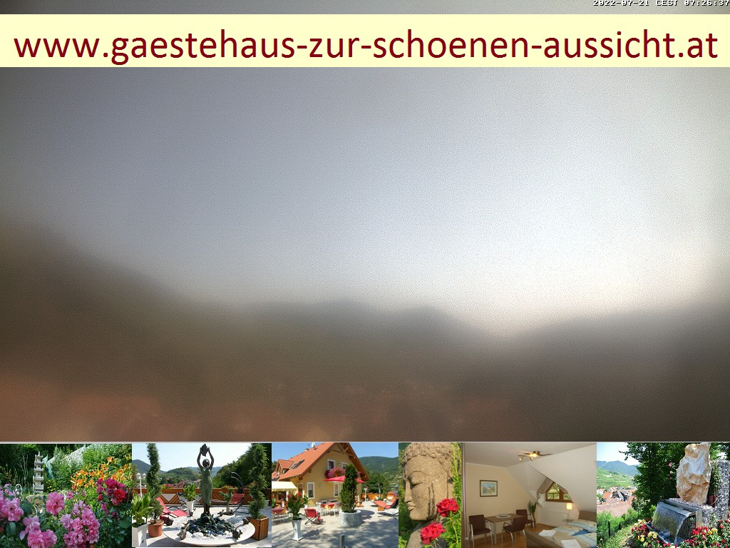 Spitz (Wachau) Mon. 11:01