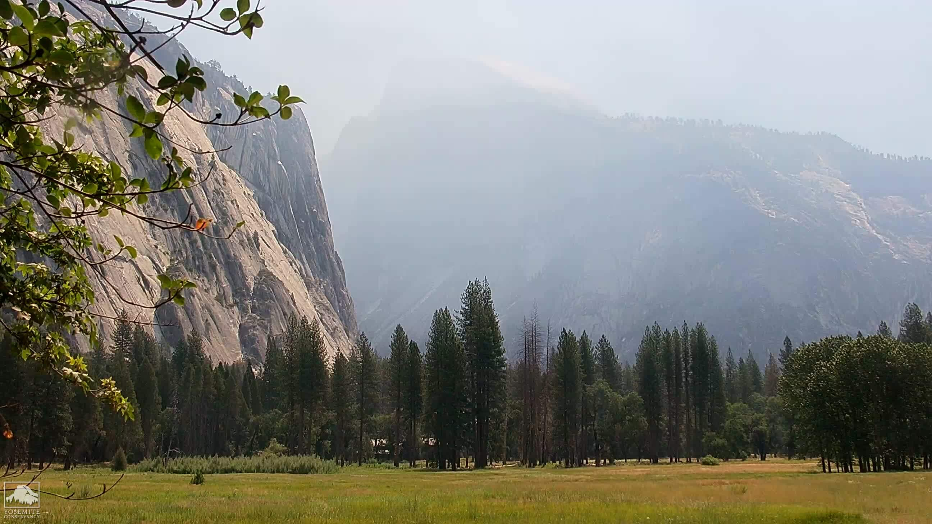 Yosemite National Park, California Tue. 10:45
