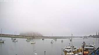 Morro Bay , California Thu. 07:35