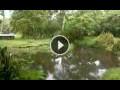 Webcam Isla Santa Cruz (Galapagosinseln)