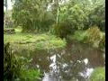 Webcam Isla Santa Cruz (Isole Galapagos)