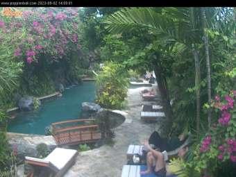 Bali's first Web live cam