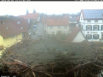 Webcam Bornheim (Palatinate)