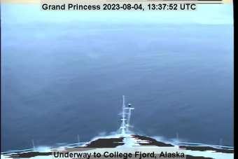 Webcam Grand Princess