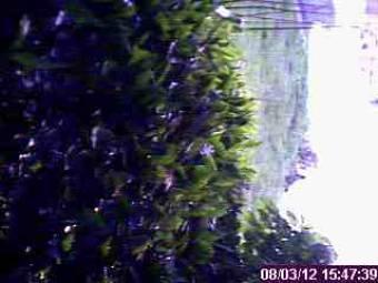 Webcam Grand Rapids, Michigan