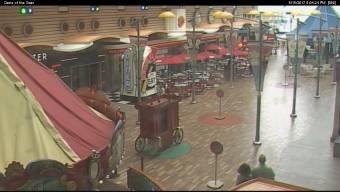 Webcam Oasis of the Seas
