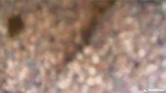Webcam Holden Beach, North Carolina
