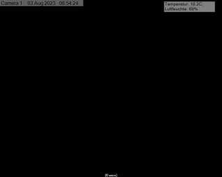 Webcam Lahr/Schwarzwald