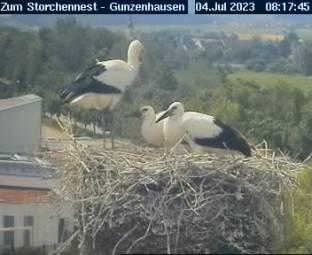 Webcam Gunzenhausen