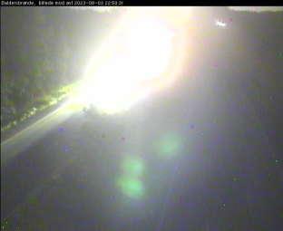 Traffic Rute 21, Fløng