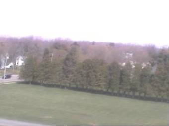 Webcam Caledonia, New York