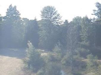 Webcam Eugene, Oregon